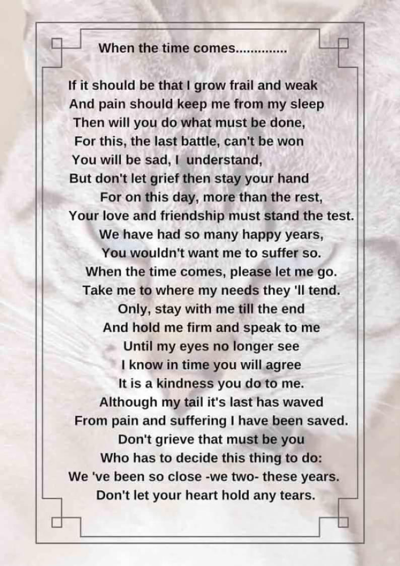 Afscheidsgedicht huisdier mamameteenblog