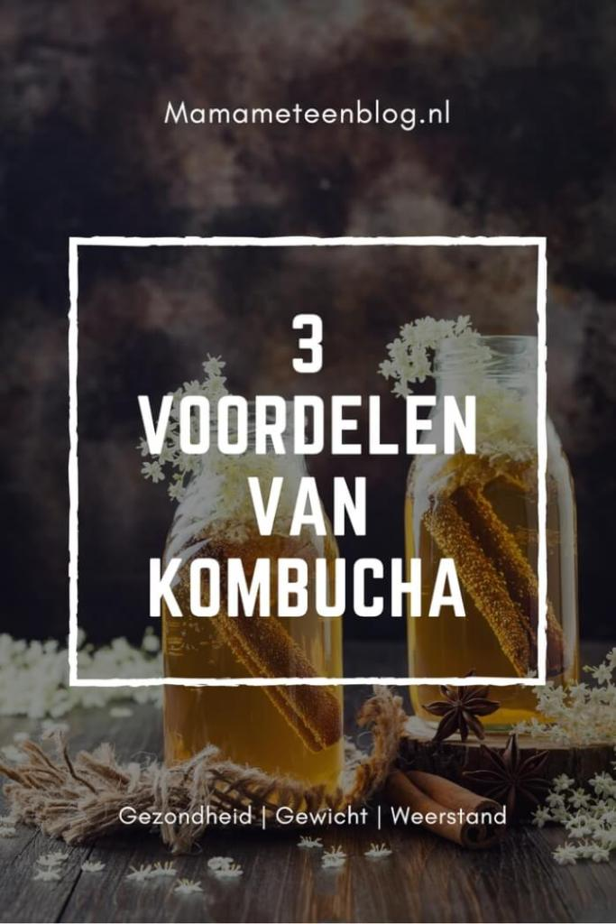 voordelen Kombucha Mamameteenblog.nl