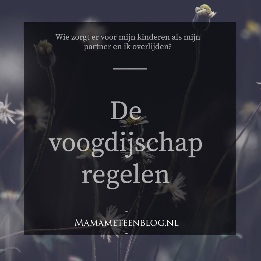 Voogdijschap regelen bij overlijden mamameteenblog.nl