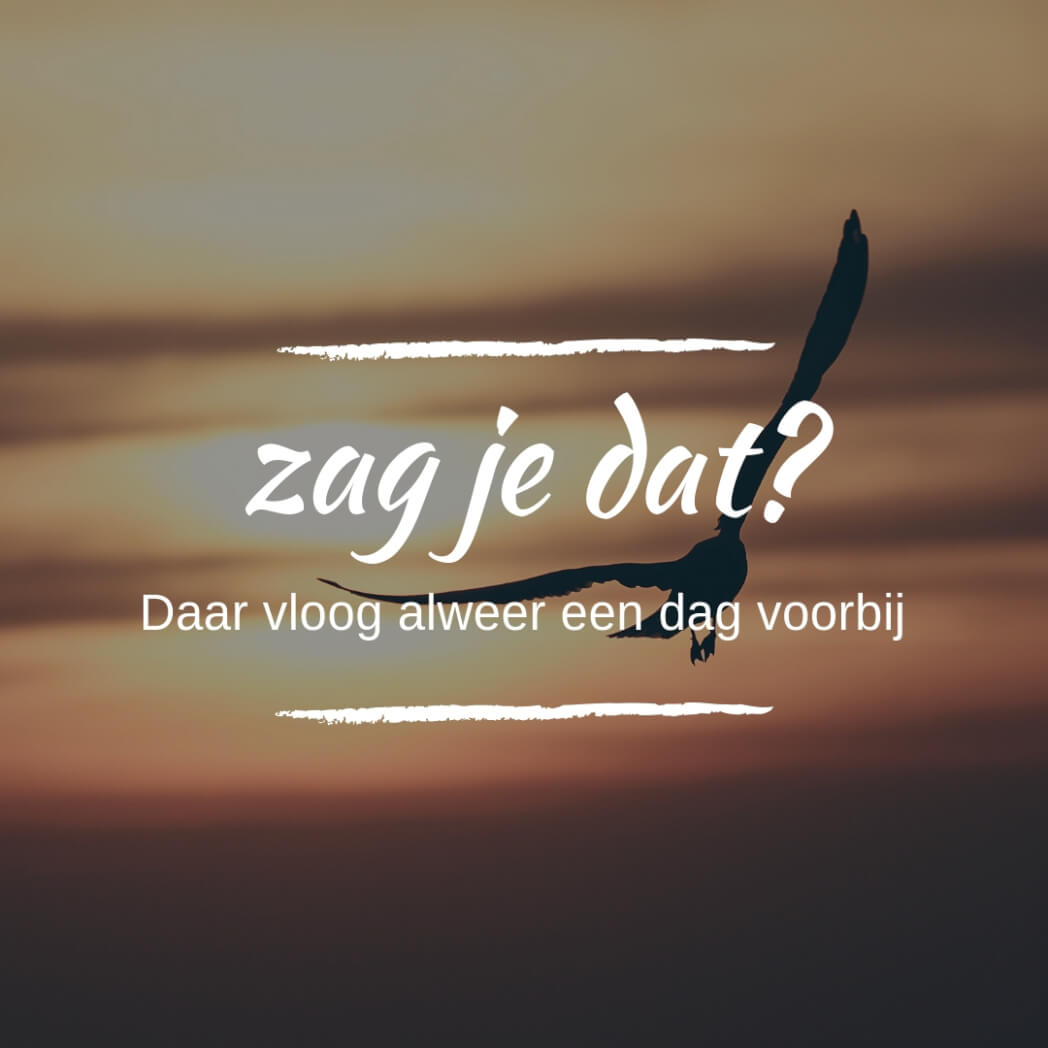 quote zag je dat mamameteenblog.nl