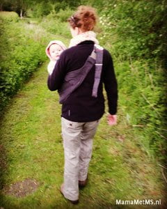 2016 Walking
