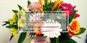 Blog-HSCT-Rollercoaster