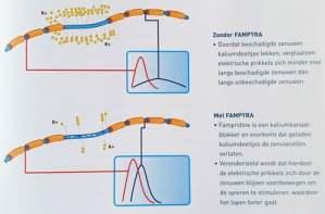Fampyra-grafiek