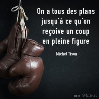 On a tous des plans jusqu'à ce qu'on reçoive un coup en pleine figure - Michel Tison