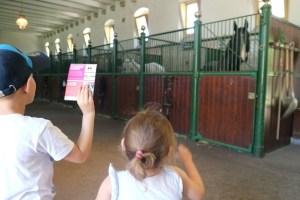 In de stallen tijdens de Prinsen- en Prinsessendagen bij Paleis het Loo