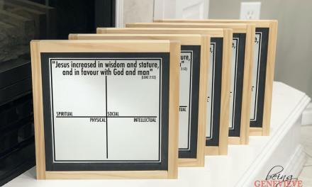 LDS Children and Youth Magnetic Boards