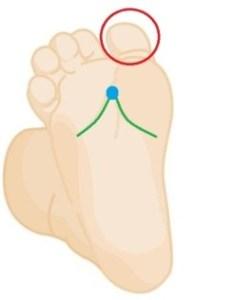 Plexus solaire ou 1 Rein sur le pied