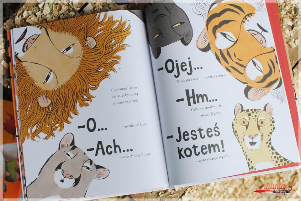podobni czy inni, jestem kotem, książka dla dzieci, nasza księgarnia