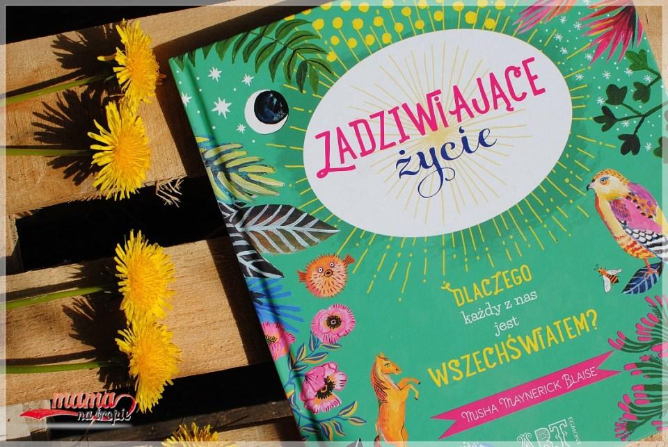 zadziwiające życie, egmont, egmont art, książka dla dzieci