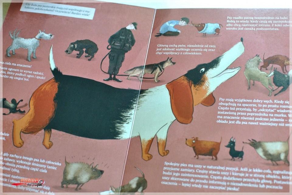 co robią psy, opowiem ci mamo, nasza księgarnia, książki dla dzieci