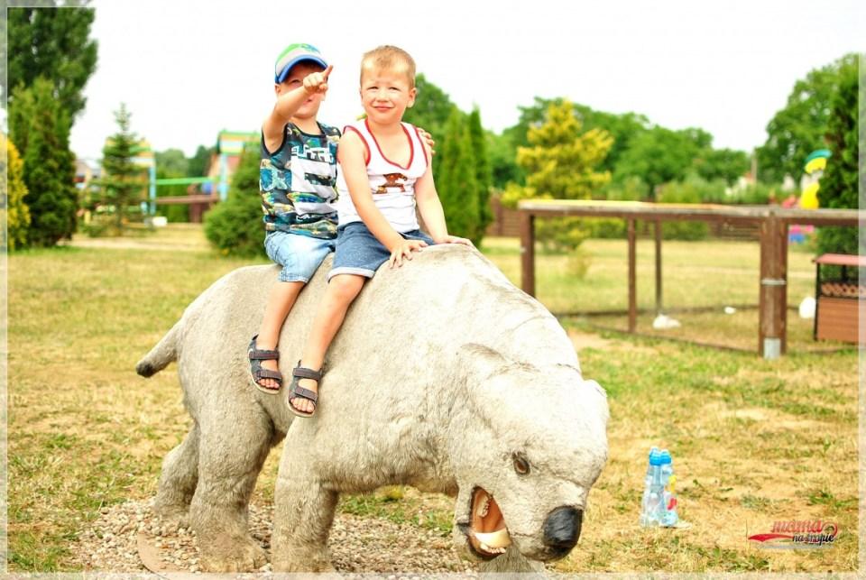 park dinozarów, Wrzosowo, atrakcja dla dzieci