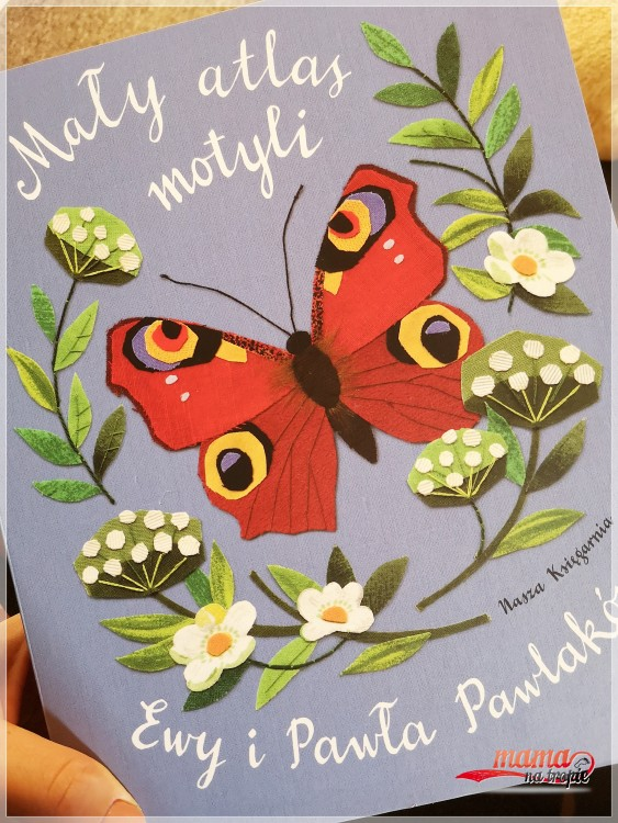 mały atlas motyli, serie książek dla dzieci, nasza księgarnia, Ewa i Paweł Pawlak