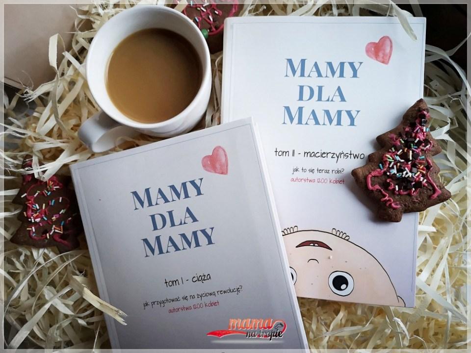mamy dla mamy, książka dla rodziców, książka o rodzicielstwie, książka o ciąży