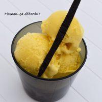 Glace à la vanille de Gaston Lenôtre