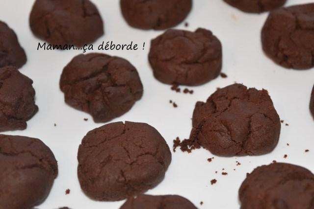 Biscuits moelleux au chocolat (sans oeuf)