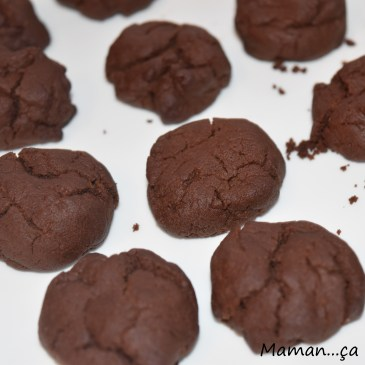 Biscuits moelleux au chocolat (sans oeuf)