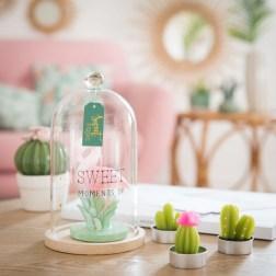 Bougie flamant rose sous cloche en verre