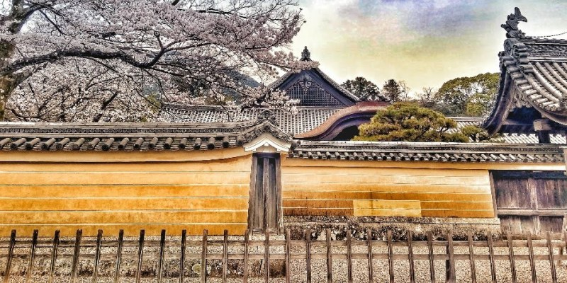 Japón. Cuadernos de viaje de una madre gemelar. Segunda Semana (de tres)