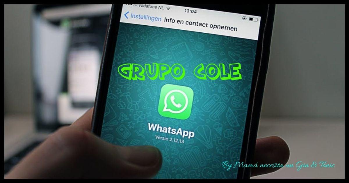 Ponte un Gin&Tonic y descubre ¿Qué perfil eres en tu grupo de padres del Whatsapp?