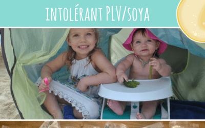 5 conseils pour voyager dans le sud avec bébé DME mixte intolérant PLV/soya