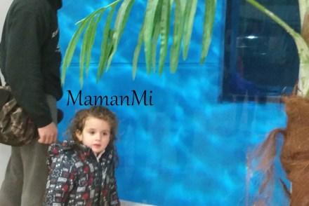 mamanmi-blog-maman-fevrier-2018 2.jpg