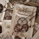 Les coquillages d'allaitement : Naturels et réutilisables