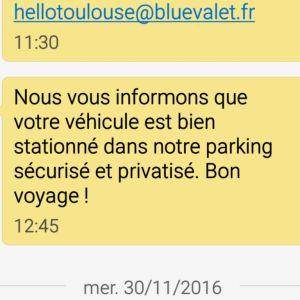 blue-valet-test