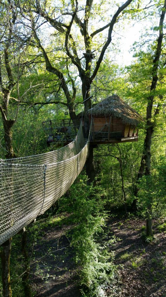 cabane perchee dans les bois