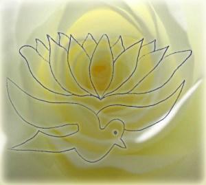 rose colombe lotus
