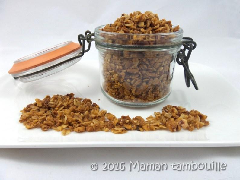 granola muesli19