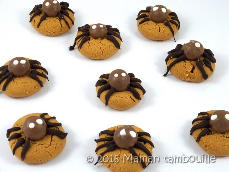 cookies-araignees13