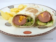 hot-dog-tortilla14
