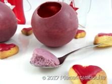 sphere mousse de fruits rouges29