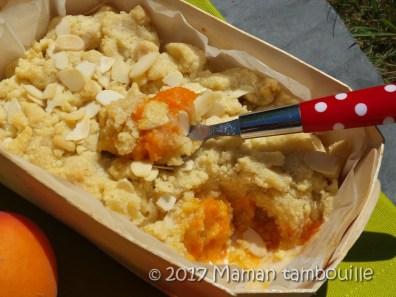 crumble abricot12