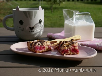 crumb cake framboises21