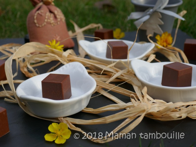 cube de chocolat11