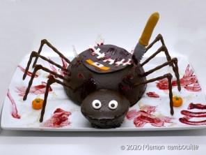 gateau araignée19