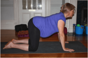 cow pose prenatal yoga