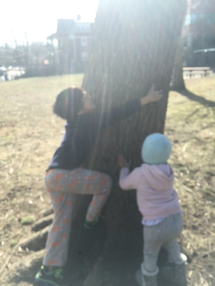 tree-huggers-via-mamanushka-blog-jpg