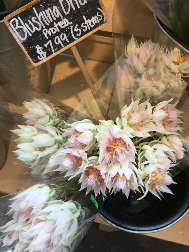 farmflowers1-via-mamanushkablog