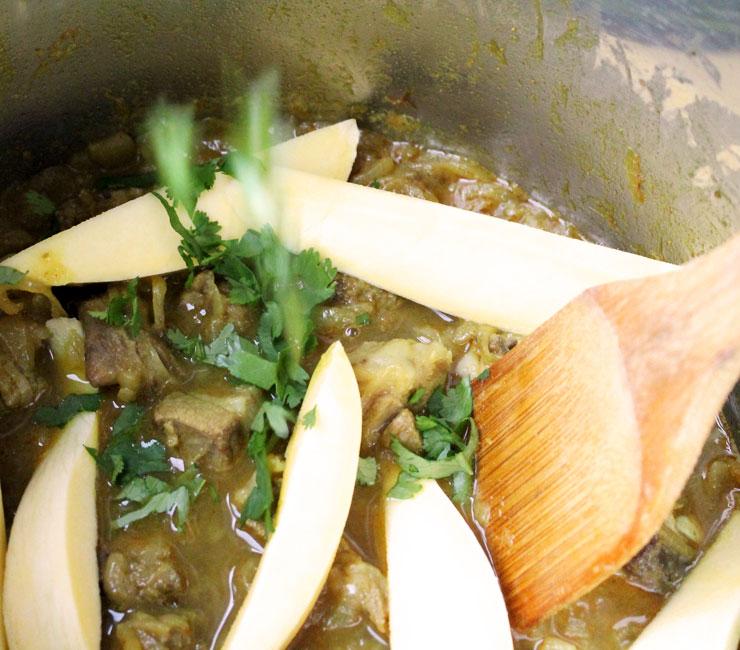 MAMANUSHKA.com    Keri Ka Do Pyaaza: Lamb Curry With Raw Mango & Fried Onions    Hyderabadi Cuisine    Easy Indian Curry    Instant Pot Curry