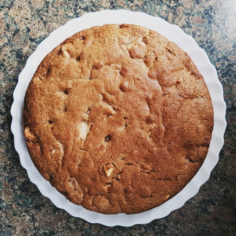 MAMANUSHKA.com || Best Apple Cake Recipe || No Mixer || Quick || Easy || Delicious || Baked