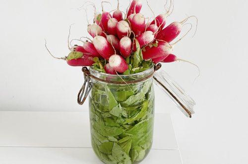 comment conserver les radis roses dans un bocal à eau