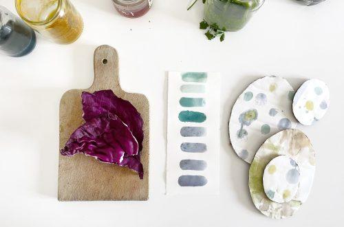 peinture vegetale maison