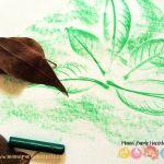 Calcar hojas secas con crayones