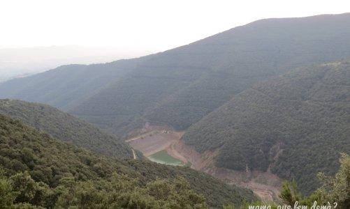 Pantà de Vallforners y castanyer de Can Cuch