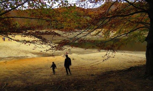Otoño en el Pantano de Santa Fe del Montseny