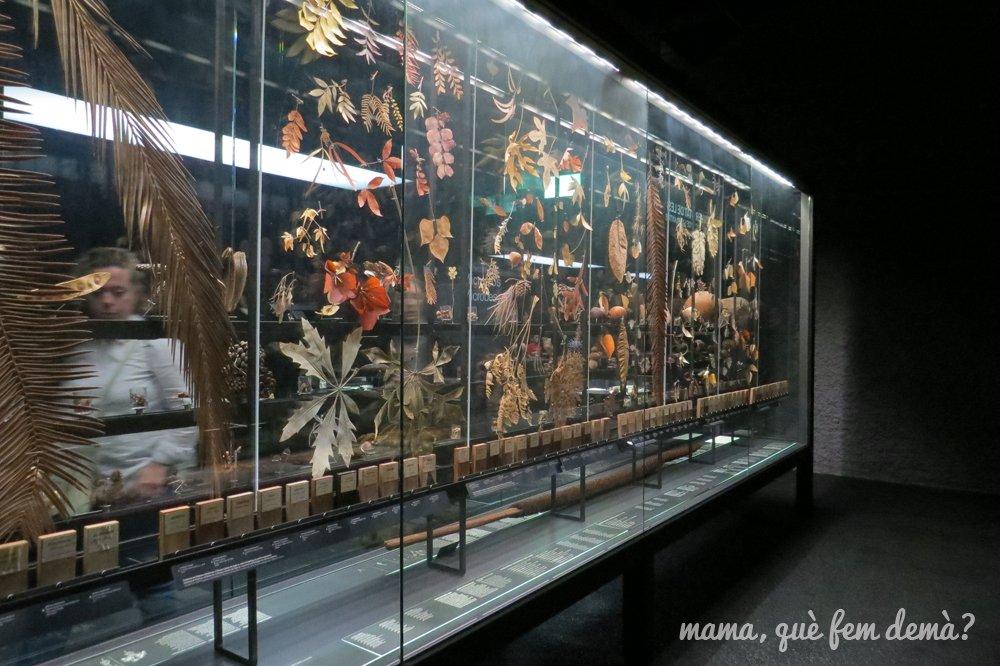museublau04