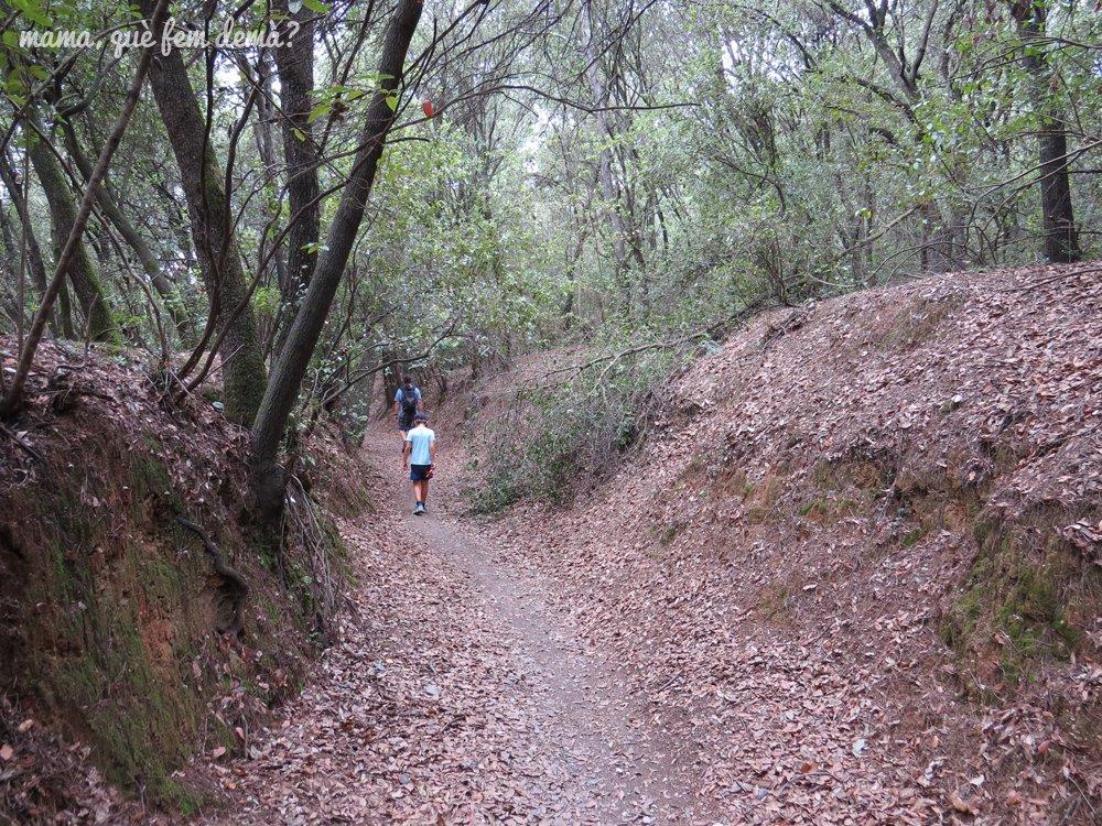 Camino de bajada de la excursión al Puig de la Guàrdia en Cerdanyola del Vallès