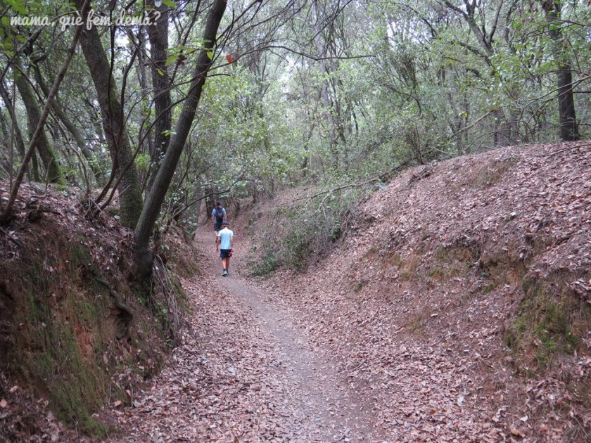 Excursión al Puig de la Guàrdia